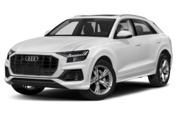 Picture of the 2021 Audi Q8
